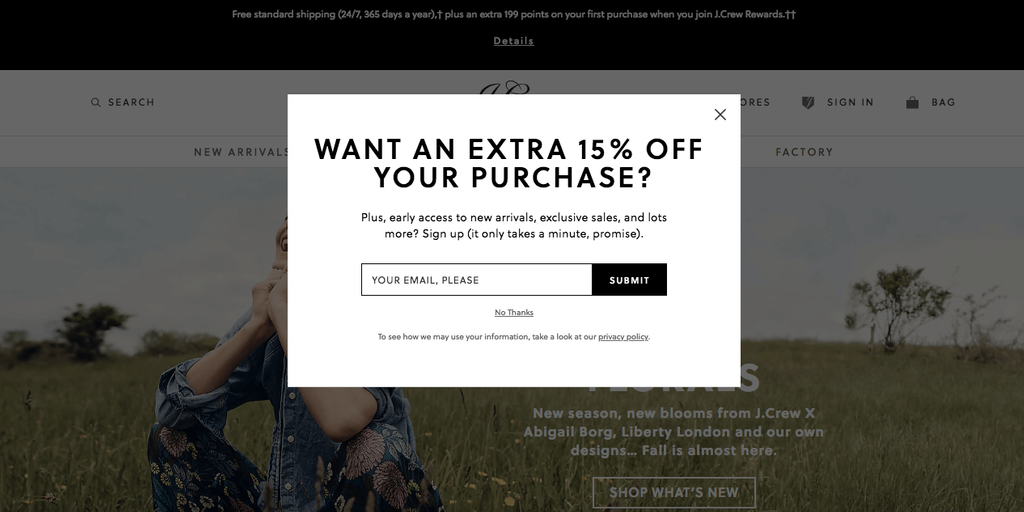 Exit intent popup appears when a customer leave the site and abandon the shopping cart